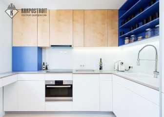 Кухни с встроенной техникой: фото готовых проектов