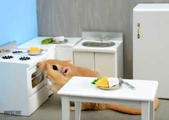 Мебель для маленьких кухонь