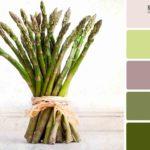 Сочетание цветов в интерьере: зеленый его комбинации