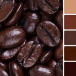 Сочетание цветов в интерьере: коричневый и его комбинации