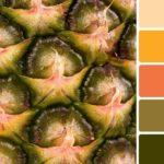 Какие цвета и оттенки считаются натуральными