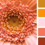 Спальня в персиковых цветах