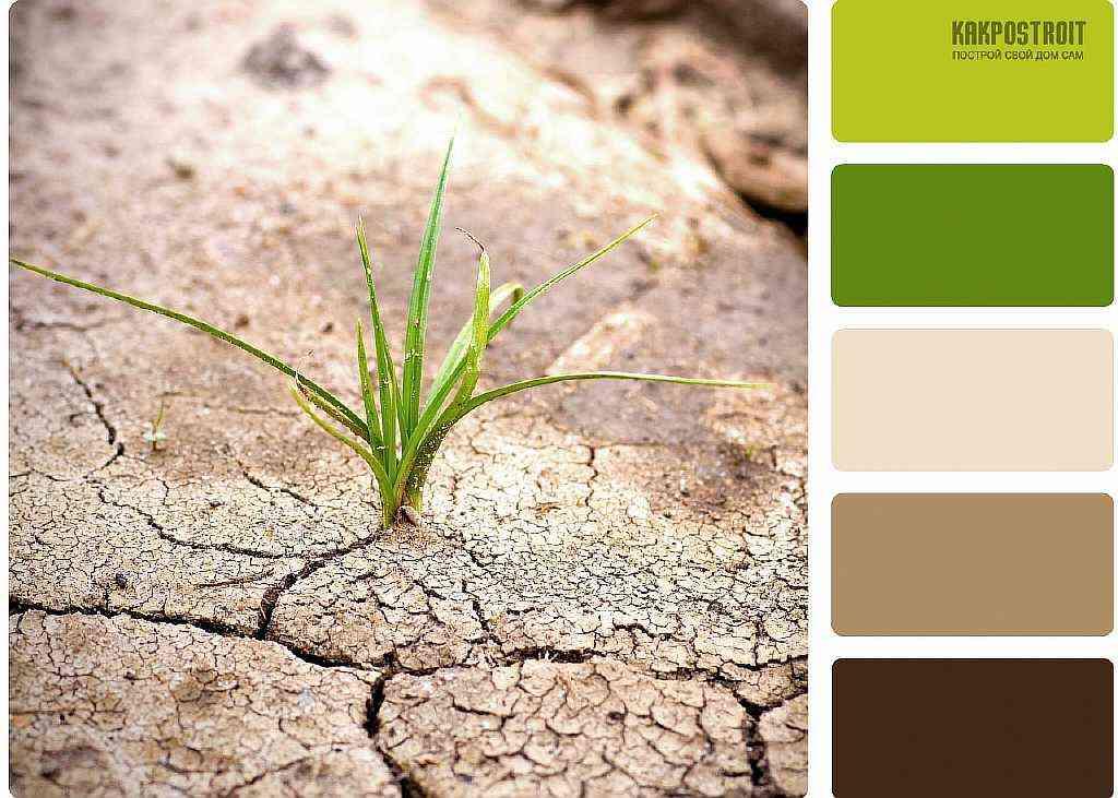 Коричневый зеленый в интерьере