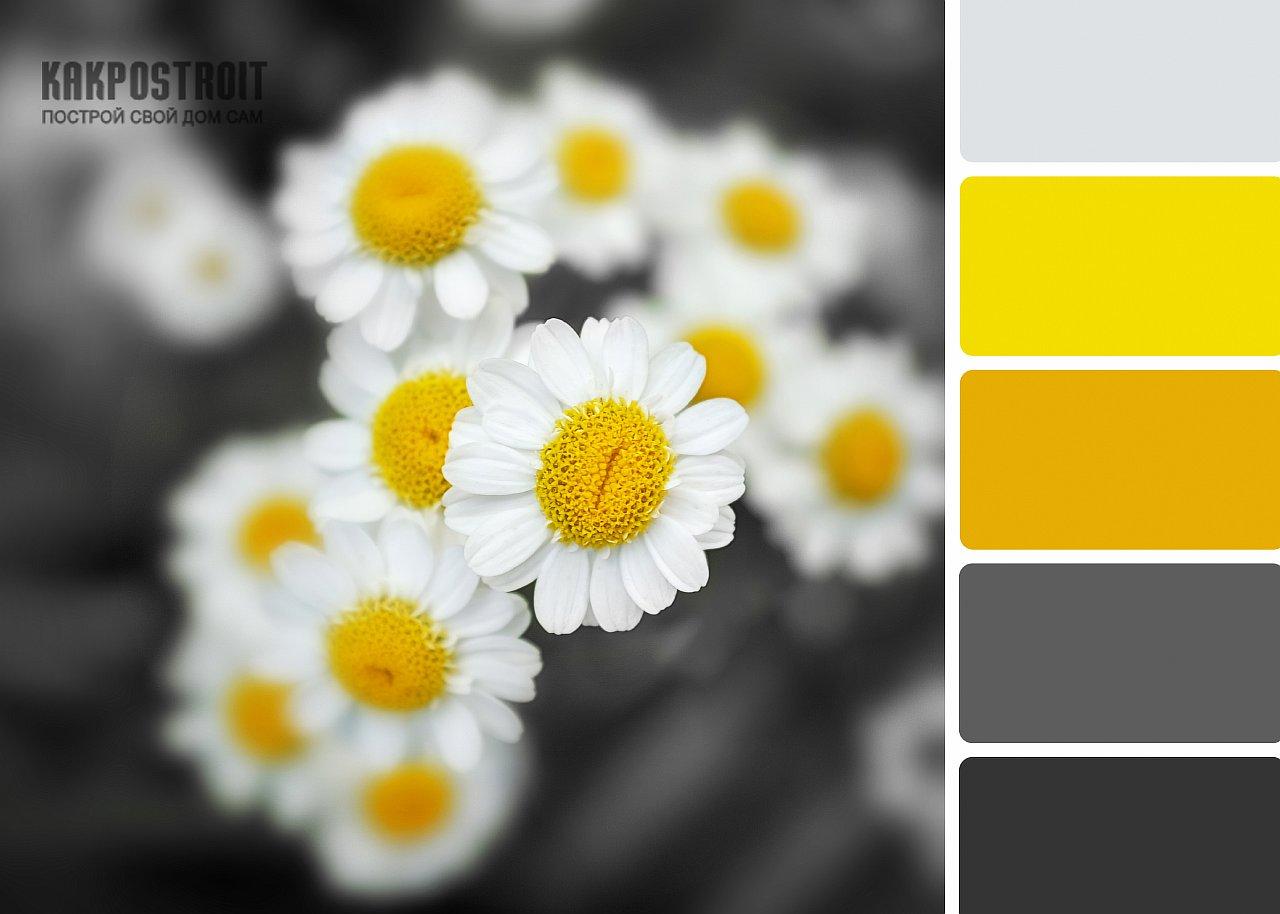 Роль цветов