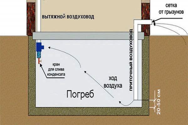 Проект погреба под гаражом