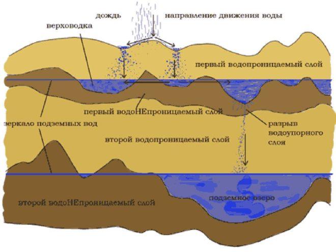 Внутренние «линзы» воды