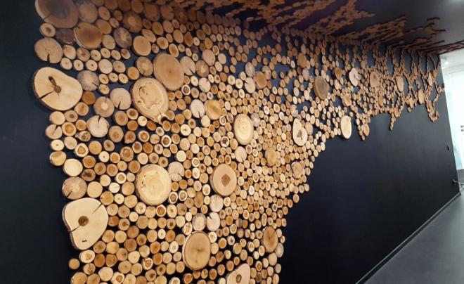 деревянные спилы на стене