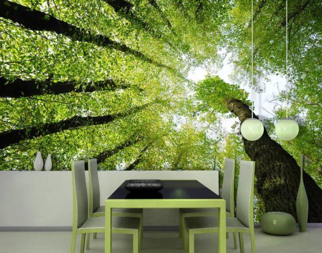 Фотообои с деревьями, расширяющие пространство