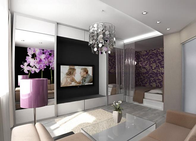 Гостиная комната со спальной зоной