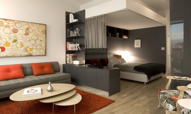 Комната с диваном и спальной зоной