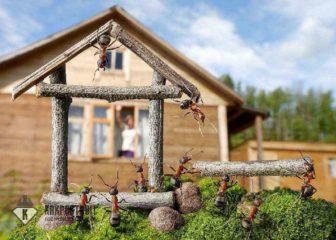 Как выгодно построить баню: цена вопроса