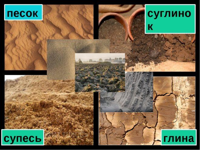 Визуальное отличие почв