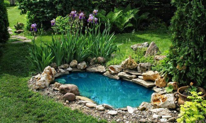 ландшафтный дизайн двора частного дома с искусственным водоемом