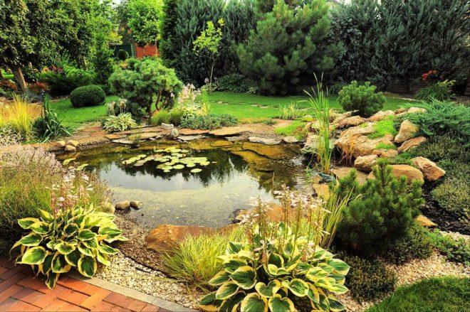 искусственный водоем в ландшафтном дизайне частного дома