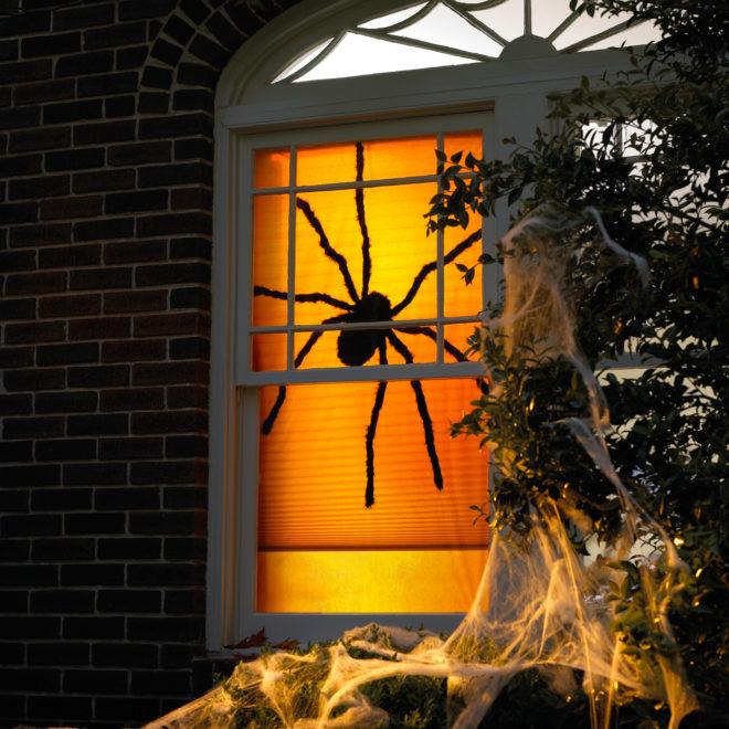 Паук и паутина в оформлении окна на Хэллоуин