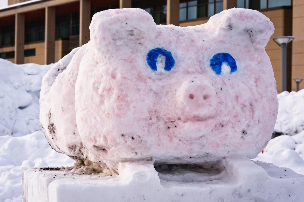Открытки новым, смешные хрюшки картинки для снежного городка