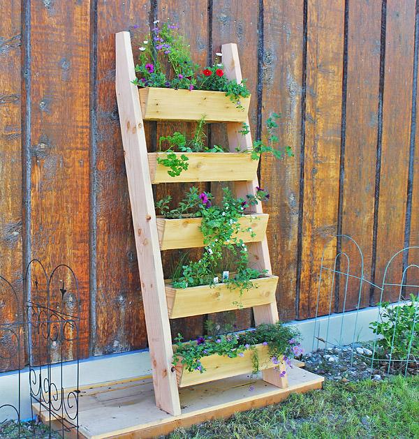 Лестница в качестве стойки для цветов