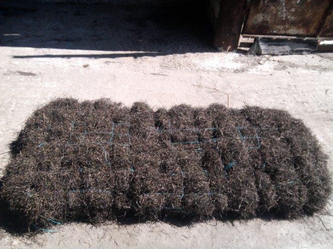 Утеплитель из морской травы