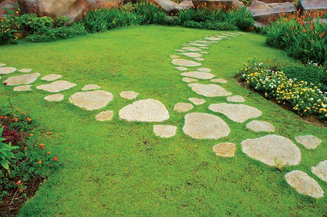 Садовая дорожка из камня на газоне