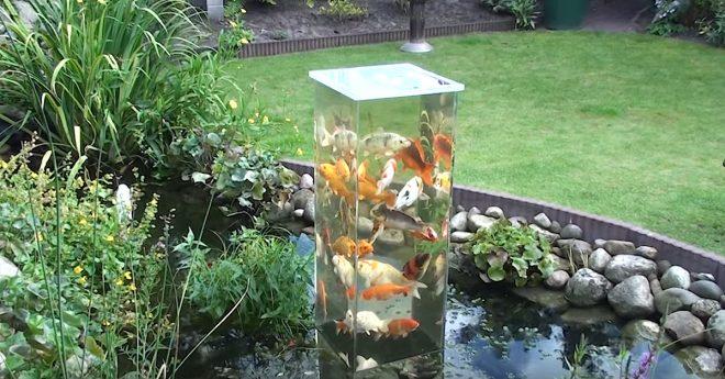 Рыбья башня из аквариума