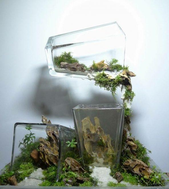 Инсталляция из нескольких аквариумов