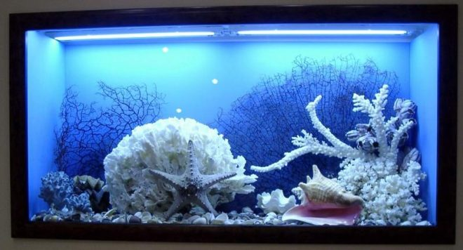 как использовать старый аквариум