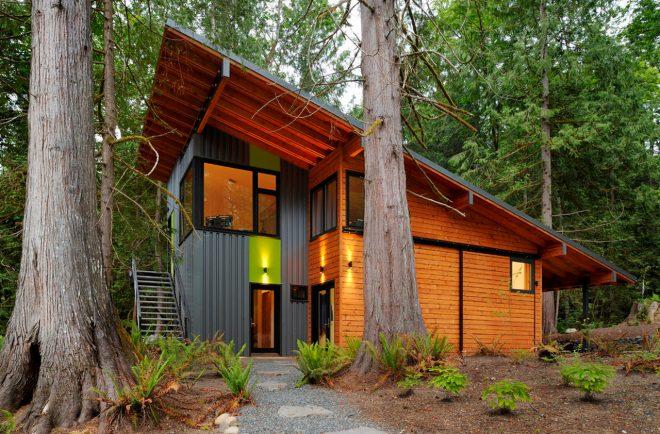 Дом с односкатной крышей большой протяжённости
