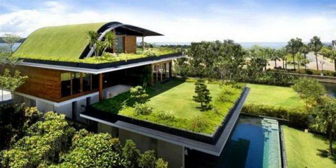 Зелёная крыша частного дома