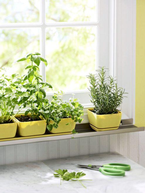как красиво украсить окно на кухне