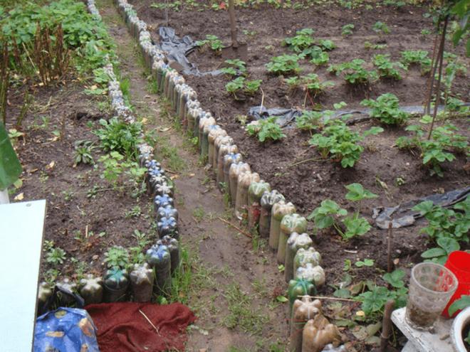 Ограждение дорожек в саду из пластиковых бутылок
