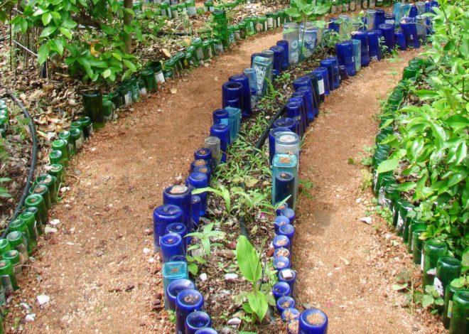 Ограждение дорожек в саду из стеклянных бутылок