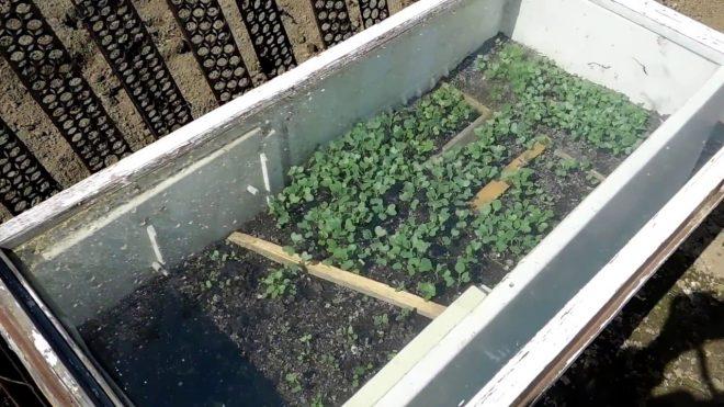 применение старого холодильника на даче