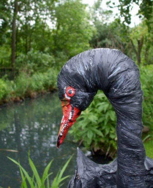 лебедь из зонта