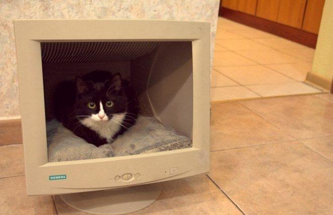 Кошачий домик из старого монитора
