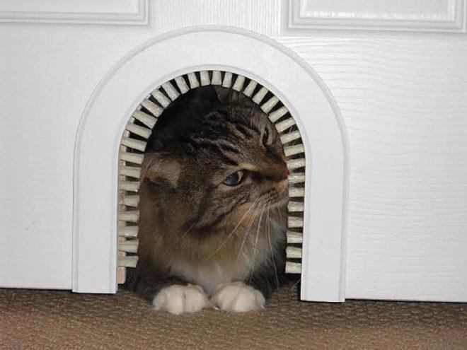 двери для животных своими руками