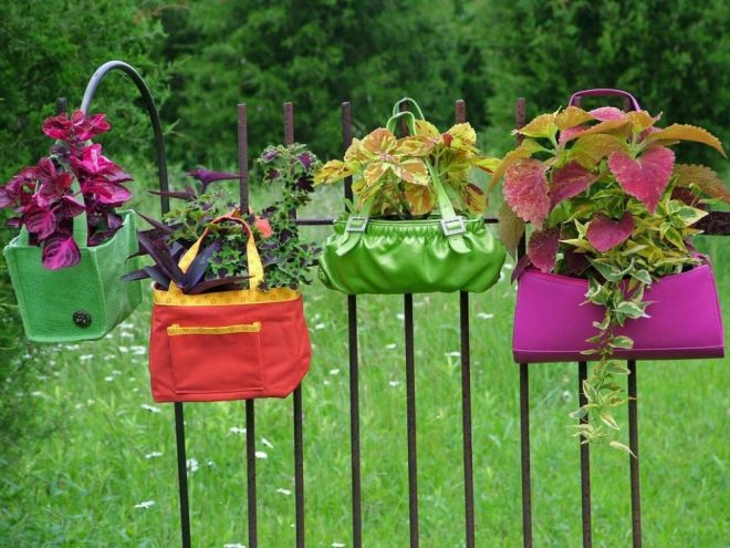 Цветы в сумках
