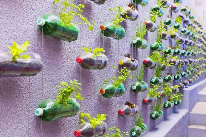 Подвесной вертикальный сад