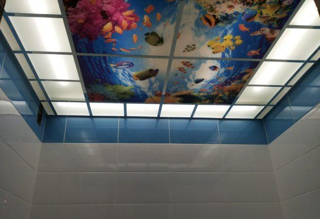 Стеклянные панели на потолке в туалете